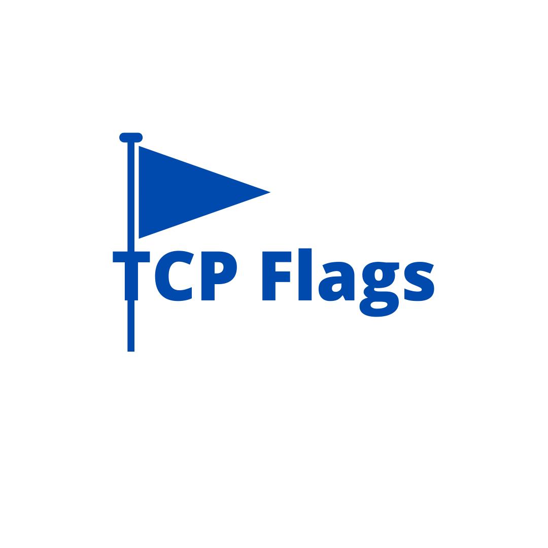 TCP Flag_Vivekananda IT Institute